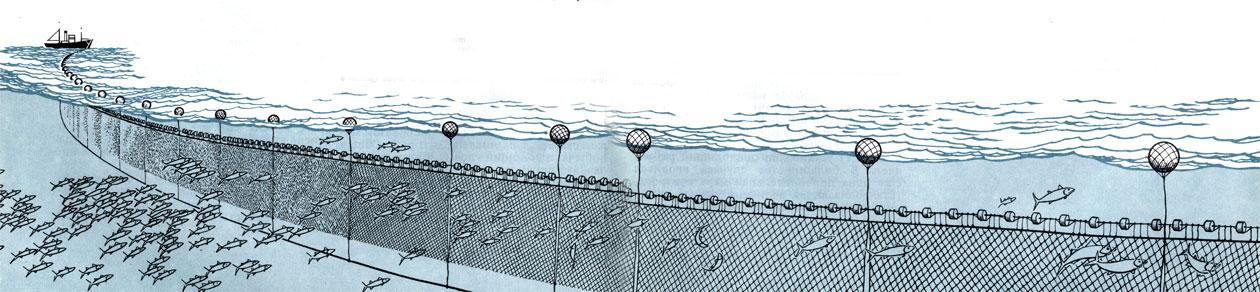 как поставить рыболовные сети на течении